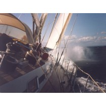 Mittelfrist-Seewetterbericht